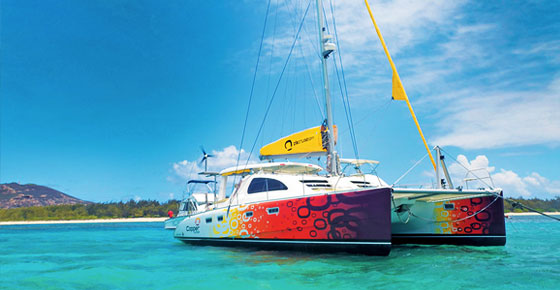 Full Day Catamaran Cruise With A Dive At Coin De Mire
